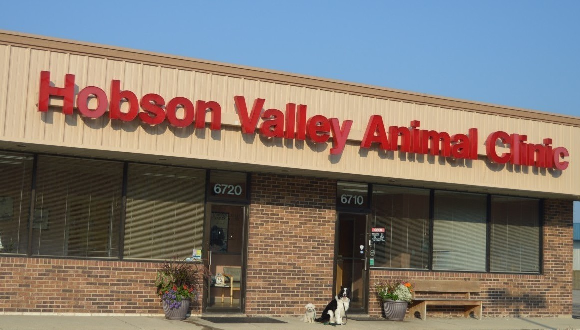 Hobson Valley Animal Clinic Rt 53 Woodridge Il 60517