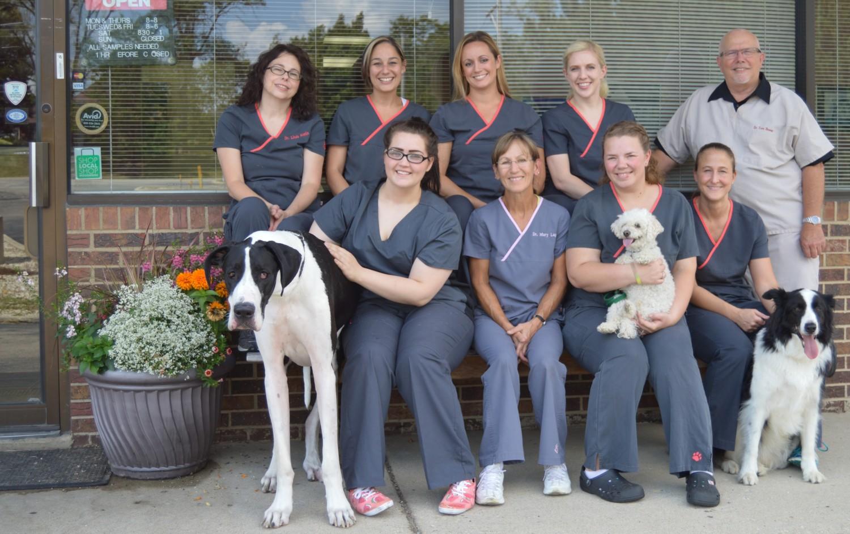 Hobson Valley Veterinarians and Staff Woodridge 60517 60565